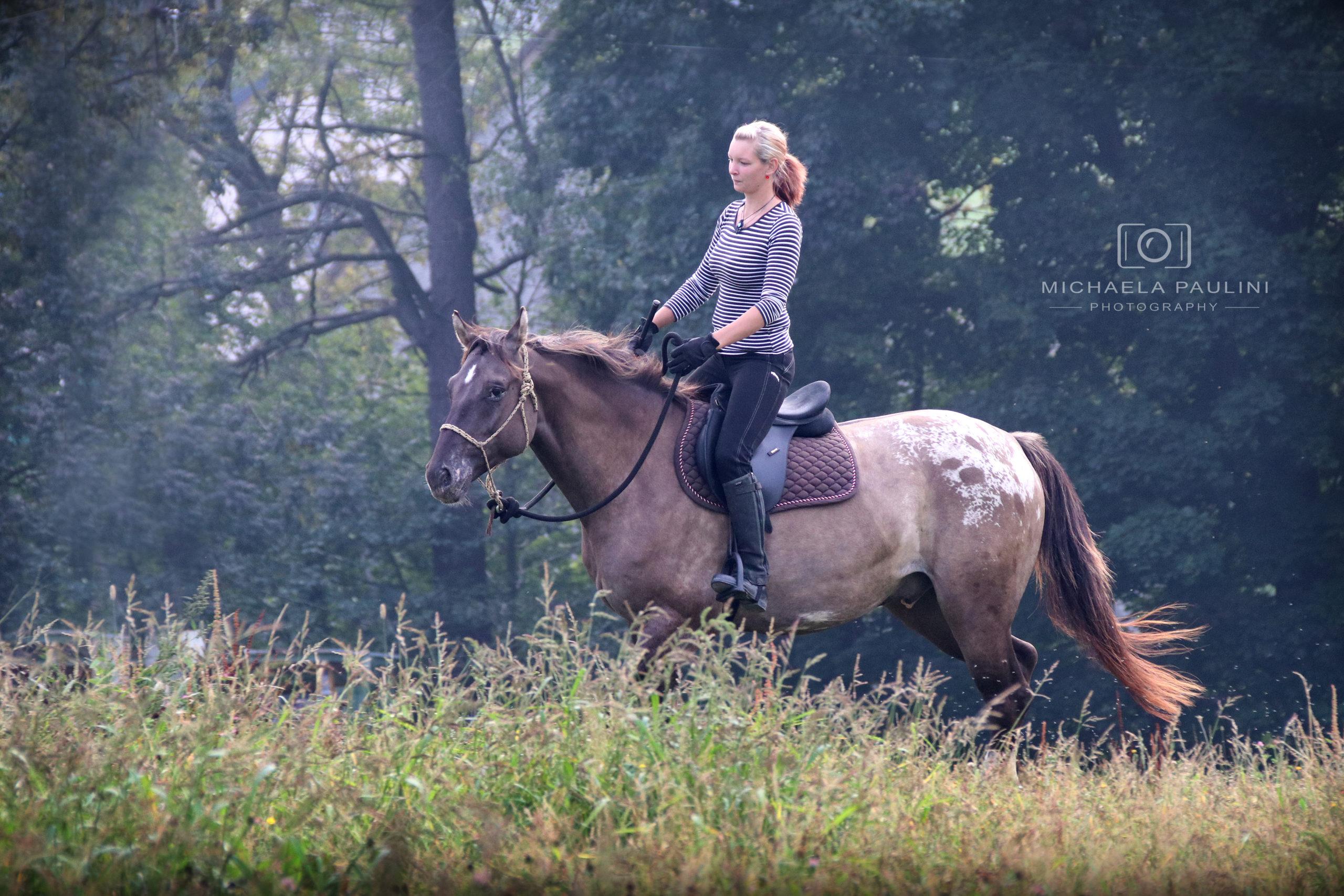 Lidé a koně